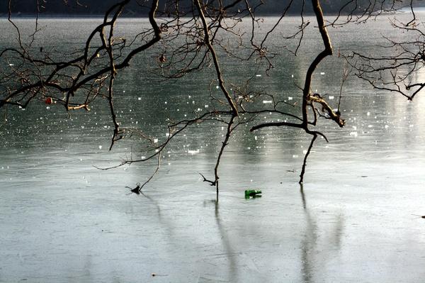 Bouteille de bière sur le lac gelé