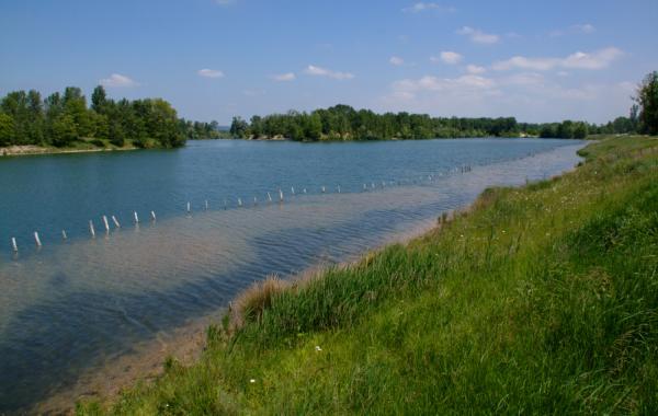 [Le lac dans le parc de Miribel-Jonage]