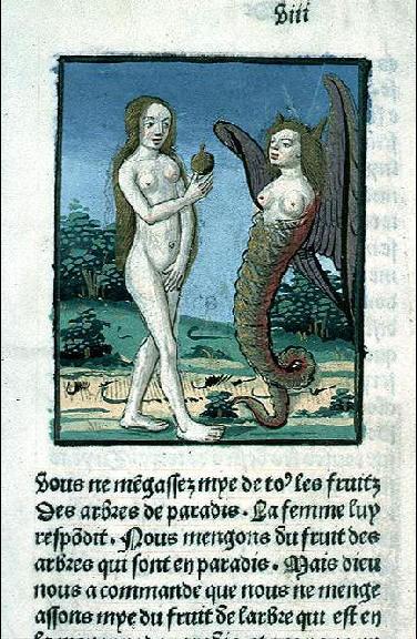 Bible historiée (volume 1)